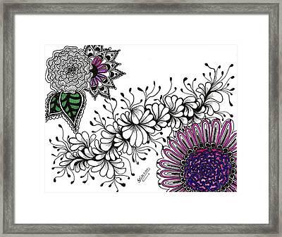Violet Algae Framed Print by Silvia Ricciardi