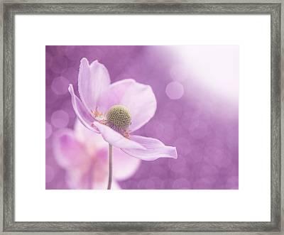 Violet Breeze 4x3 Framed Print