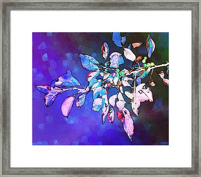 Violet Illumination Framed Print by Shawna Rowe