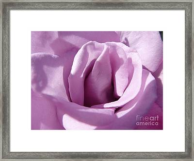Violet Light Framed Print by Anat Gerards