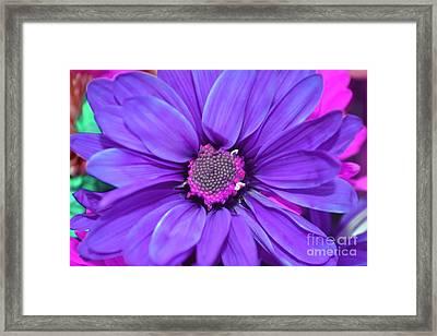Violet Purple Flower Framed Print by LLaura Burge