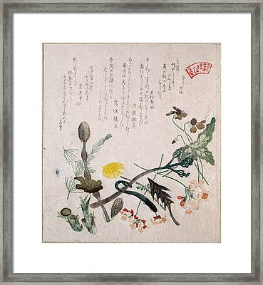 Violets Primroses And Other Spring Flowers Framed Print by Kubo Shunman