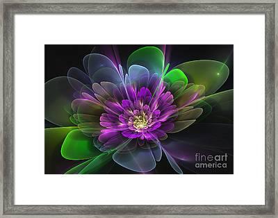 Violetta Framed Print by Svetlana Nikolova