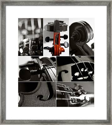 Violin Collage Framed Print