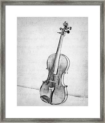 Violin In Black And White Framed Print