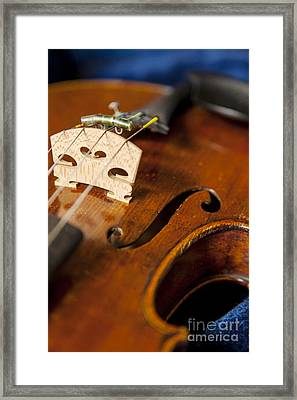 Violin In Its Case Framed Print by Brian Jannsen