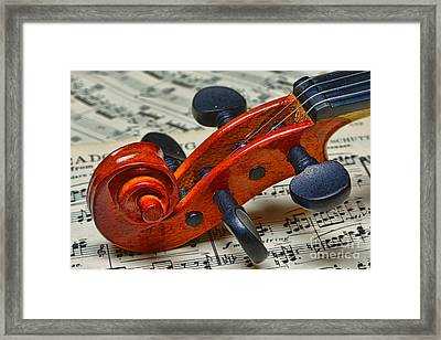 Violin Scroll Up Close Framed Print by Paul Ward