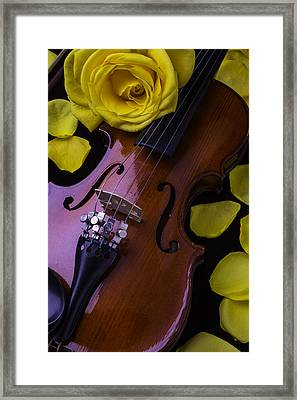 Violin With Yellow Rose Framed Print by Garry Gay