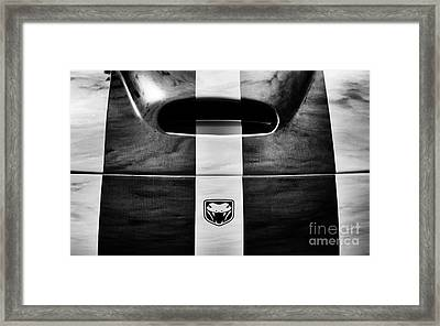 Viper Framed Print by Tim Gainey