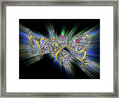 Viral Rna Packaging Signal Complex Framed Print by Laguna Design