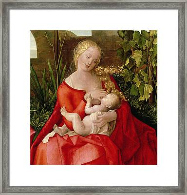 Virgin And Child Madonna With The Iris, 1508 Framed Print
