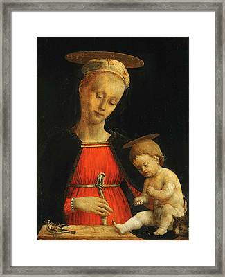 Virgin And Child With A Bird And A Cat Framed Print by Giovanni Martino Spanzotti
