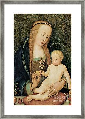 Virgin And Child With Pomegranate Framed Print by Hans Holbein the Younger