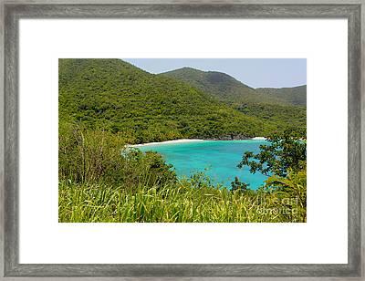 Virgin Islands Framed Print by Carey Chen