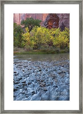 Virgin River In Fall - Zion Framed Print