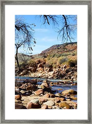 Virgin River Zion National Park Framed Print by Barbara Snyder