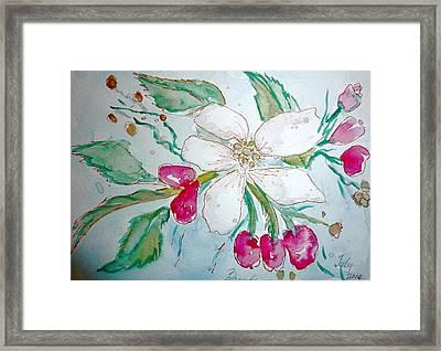 Virginia Dogwood Framed Print by Brenda Ruark