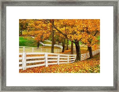 Virginia Horse Country Framed Print