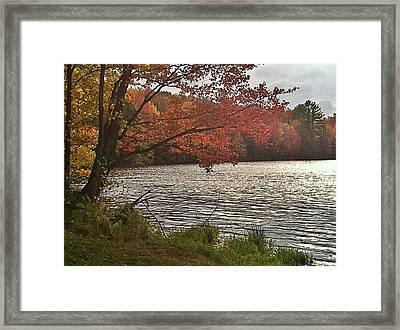 Framed Print featuring the photograph Virginia Landscape Art by Digital Art Cafe