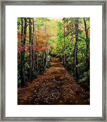 Virginia Path Framed Print by Jessica Tookey