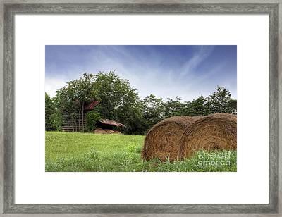 Virginia Tobacco Barn Framed Print by Benanne Stiens