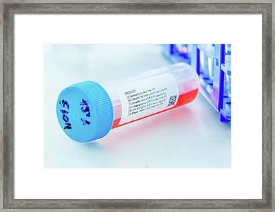 Virology Test Tube Framed Print by Wladimir Bulgar