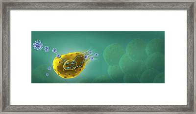 Virus Life Cycle Framed Print by Henning Dalhoff