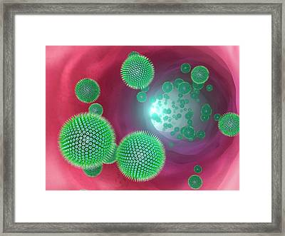 Virus Particles In A Vein Framed Print