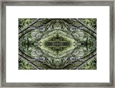 Visions Framed Print