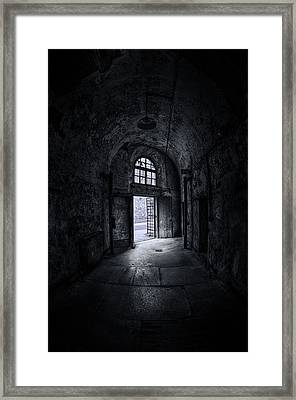 Visions From The Dark Side Framed Print by Evelina Kremsdorf