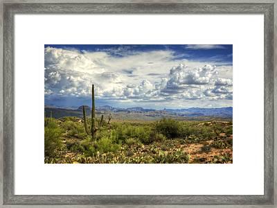 Visions Of Arizona  Framed Print
