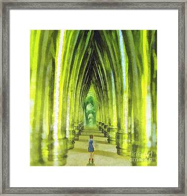 Visiting Emerald City Framed Print by Mo T
