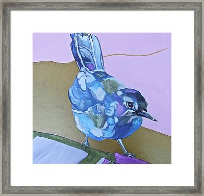 Visiting Wren Framed Print