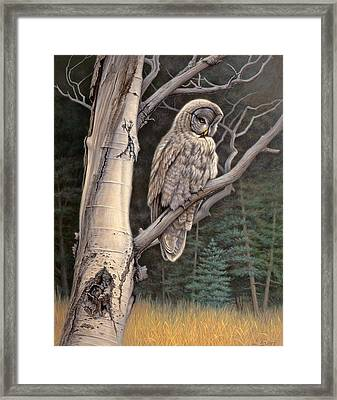Visitor From The North-great Grey Owl Framed Print by Paul Krapf