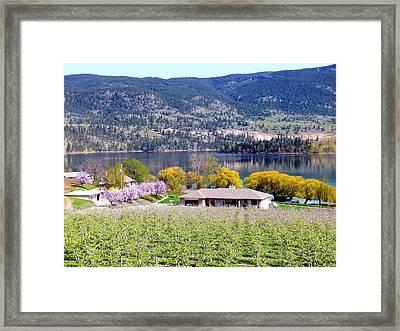 Vista 20 Framed Print by Will Borden