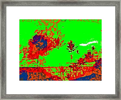 Vista Framed Print by Kelly McManus