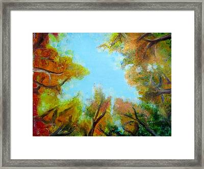 Vista Of The Past Framed Print