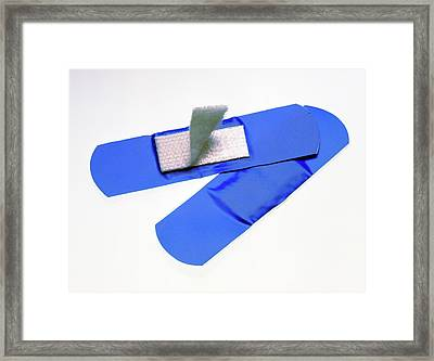 Visually And Magnetically Detectable Plaster Framed Print by Sheila Terry/science Photo Library