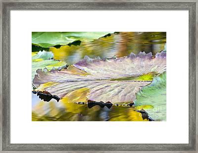 Vitality Framed Print