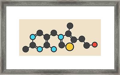 Vitamin B1 Molecule Framed Print by Molekuul