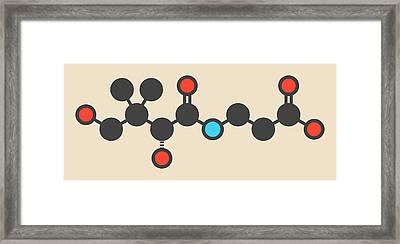 Vitamin B5 Molecule Framed Print by Molekuul