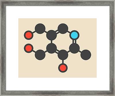 Vitamin B6 Molecule Framed Print by Molekuul