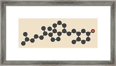 Vitamin D3 Molecule Framed Print by Molekuul
