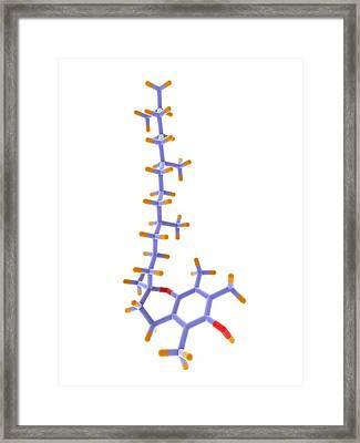 Vitamin E Molecule Framed Print