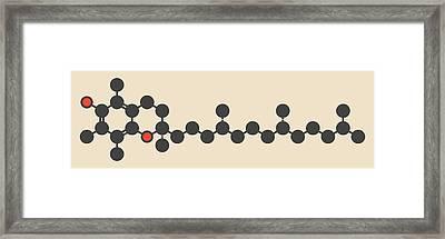 Vitamin E Molecule Framed Print by Molekuul