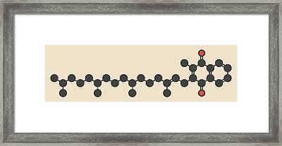 Vitamin K1 Molecule Framed Print by Molekuul