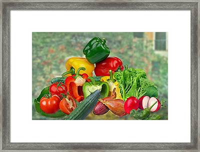 Vitamins Framed Print by Manfred Lutzius
