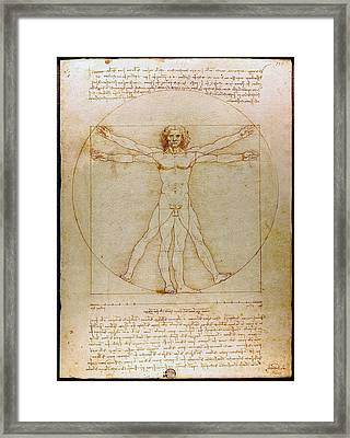 Vitruvian Man By Leonardo Da Vinci  Framed Print