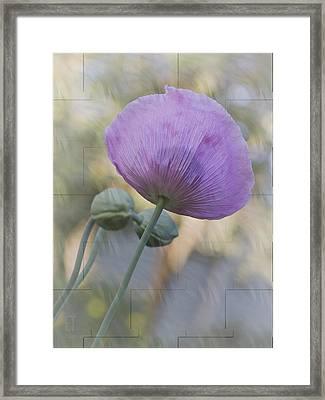 Vivian Framed Print by Elaine Teague