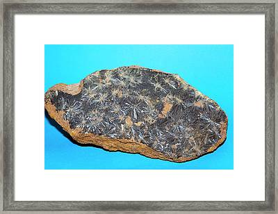 Vivianite I Framed Print